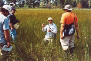Scott Namestnik, Senior Plant Biologist at Orbis Environmental Consulting performs wetland training